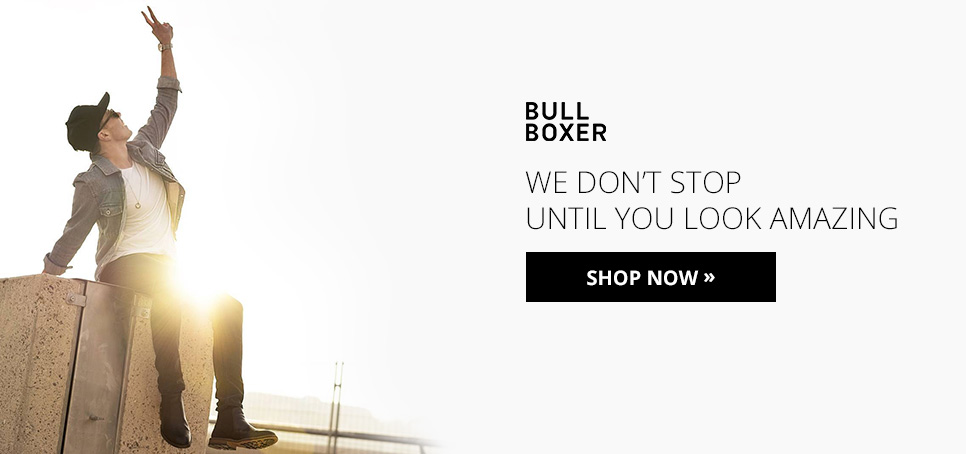 hp_bullboxer_large_banner
