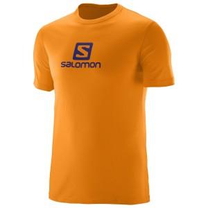 מוצרי סלומון לגברים Salomon Coton Logo SS TEE - כתום