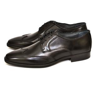 מוצרי מוריסון די לגברים Morrison D 5101 CALF - שחור